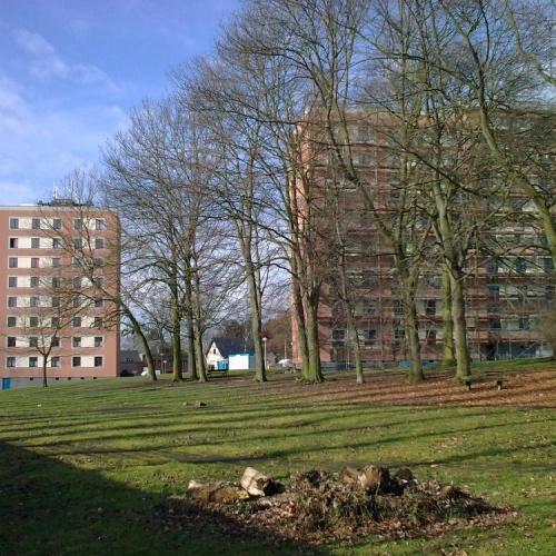 Charleroi 02